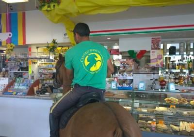 Colazione al bar con il cavallo a Perugia