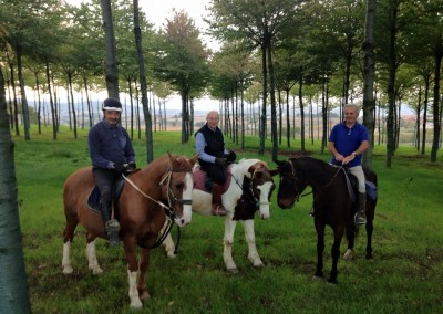 Passeggiata a cavallo a perugia nel bosco di ciliegi