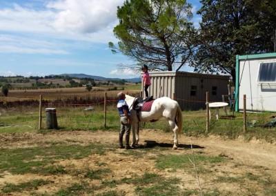 sezione scuola equitazione